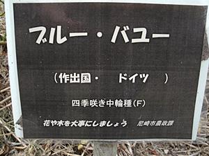 GEDC0196.JPG