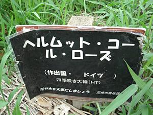 GEDC0198.JPG