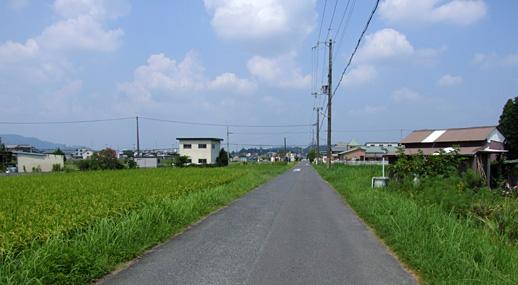 20100825-11.jpg