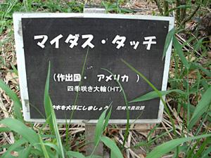 GEDC0202.JPG